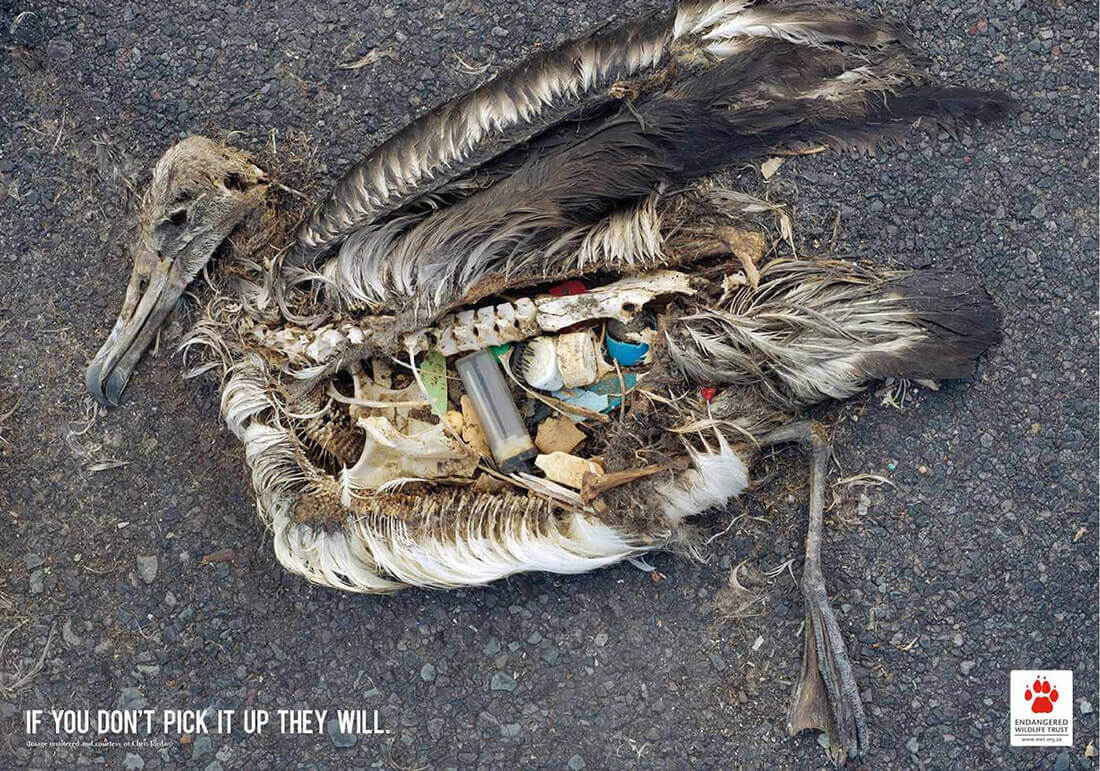 If You Don't Pick It Up They Will – EWT