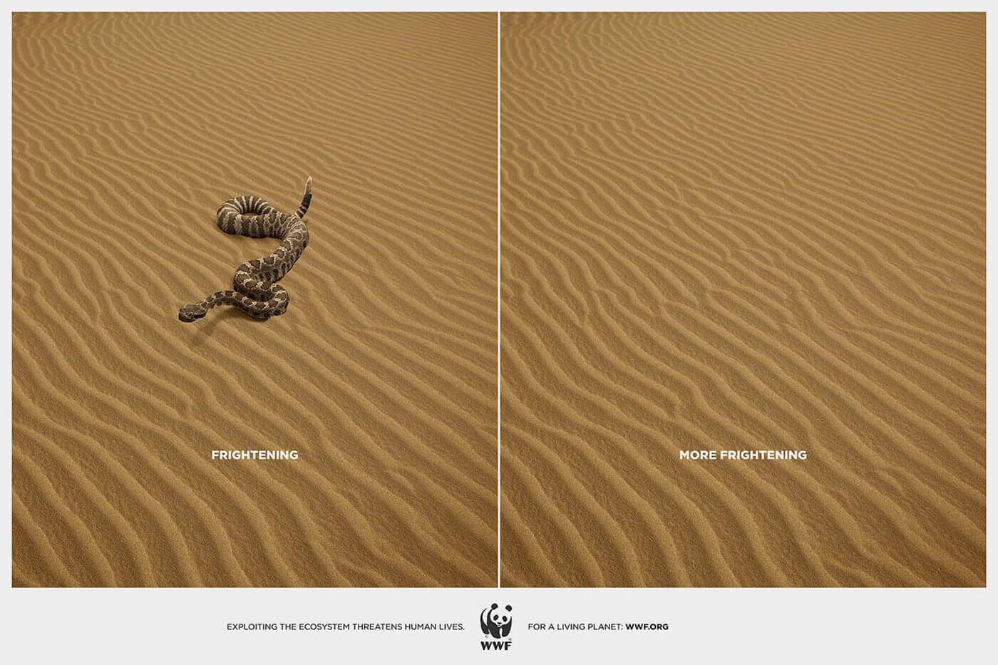 More Frightening – WWF